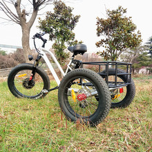 Fat 48V 500W cargo electric tricycle With the Best Quality