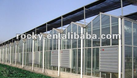 SELL 4 5 6 8 10 12mm high quality glass tempered glass for sunroom