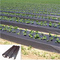 black plastic poly sheeting as plastic weed barrier for sale