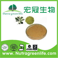 Top Quality 10:1 Light-brown Yerba Mate Extract Powder