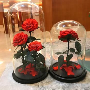 wholesale eternal flower preserved 3 roses red in glass dome
