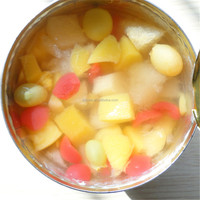 Tropical Fruit Salad Light Syrup, Canned Fruits