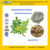 GMP Certified Manufacturer Supply High Quality Boswellia Extract