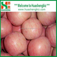 Shandong fresh red fuji apple exporter