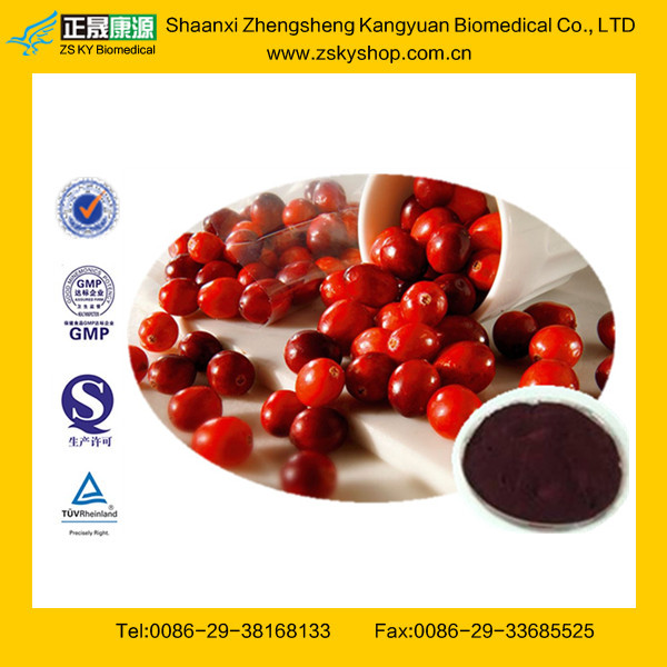 Cranberry Juice Extract from GMP Certified Factory