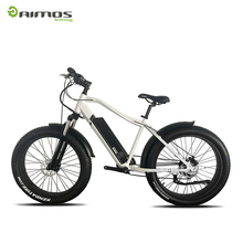 Fat tyre snow electric bike mountain ebike with 48V 1000W BAFANG mid drive motor