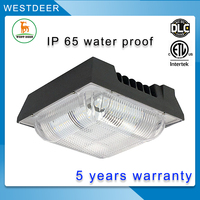 New products 2017 50 75 100 120w led canopy light led lighting with best price