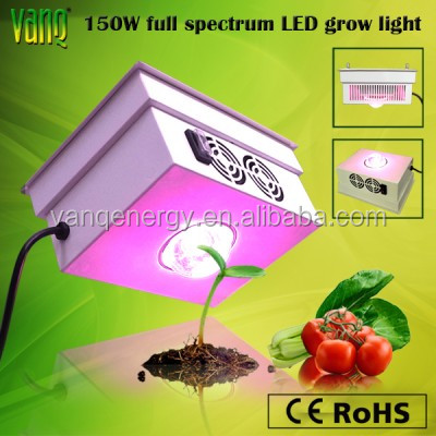 Led agriculture light,150w COB grow light for cherry,tomatoes indoor plant capon light