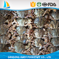 Supply crab products frozen mud crab seafood