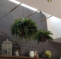 Buy 66 cm long artificial nephthytis hanging plants with 532lvs in ...