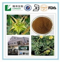 The natural plant extract tribulus terrestris extract 90% saponins