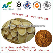 Competitive price and prompt delivery astragalus mongholicus