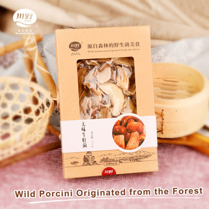 Hot Sale Sliced Price Dried Procini Mushroom Boletus Edulis