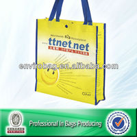 B2B Promotion Plastic Tote Bag w/Nylon/Button Opening