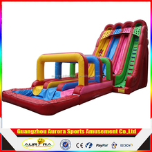 Hippo inflatable water slides with pool for party and events