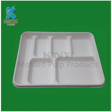 Customized healthy eco-friendly bagasse pulp molded biodegradable food tray packaging