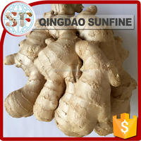Buyer of dry fresh ginger