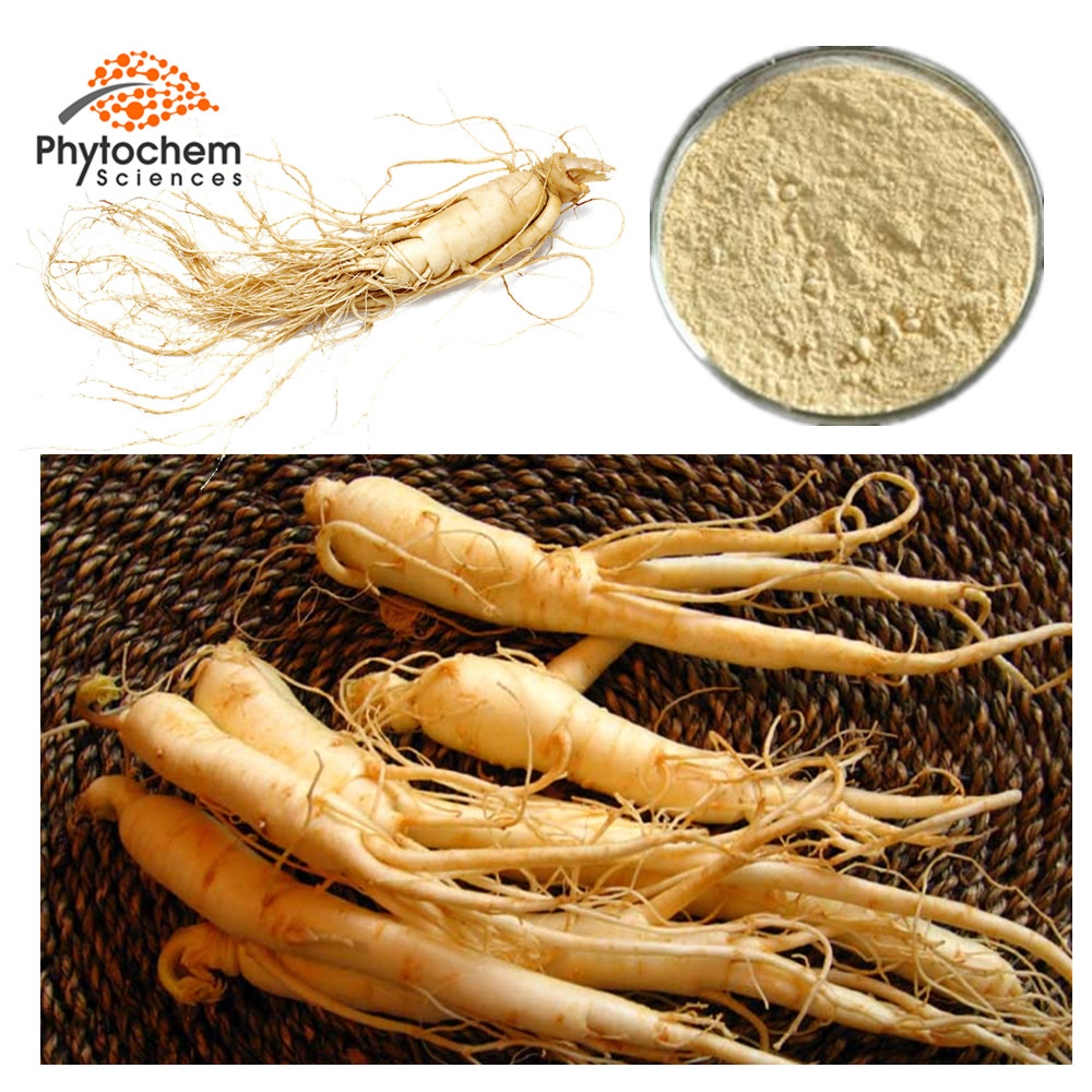 Natural high quality Ginseng Extract/ Panax Ginseng