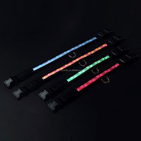 Hot selling flat Led flashing glowing dog collars