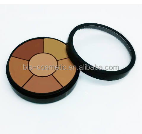 6 Color Concealer Cream Private Label