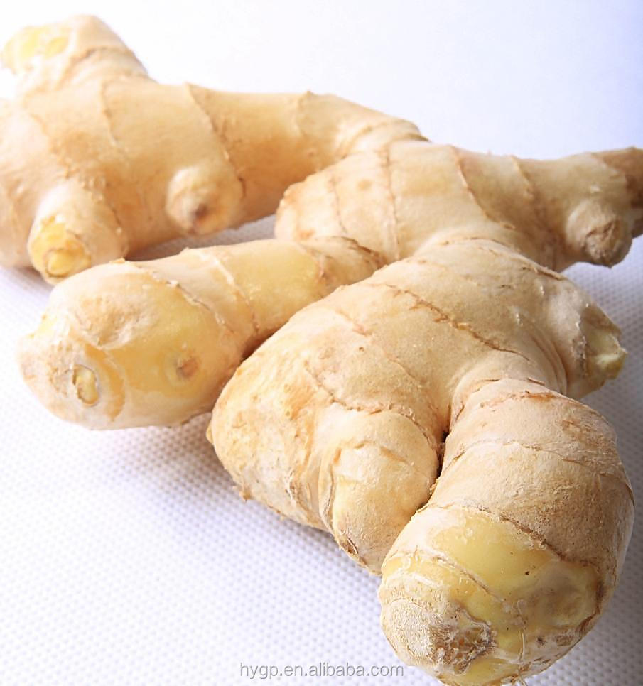 Chinese Fresh Ginger Supplier