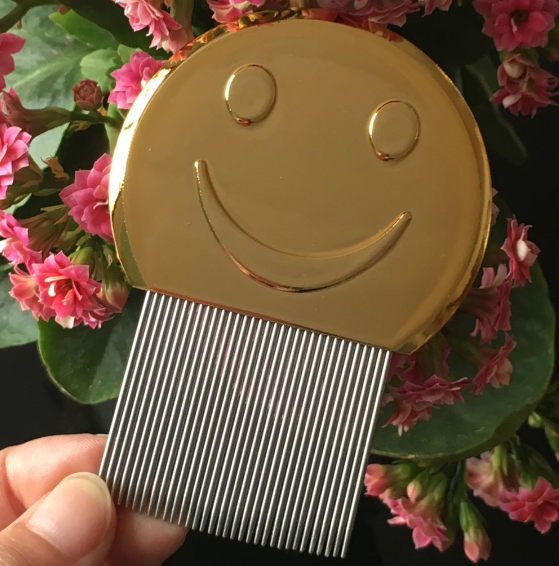 new design! golden smile ABS handle head lice comb nit free lice removal