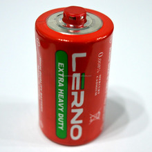 Size D dry cell battery