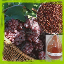 Natural Edible Food Color Power Grape Skin Extract with High Quality