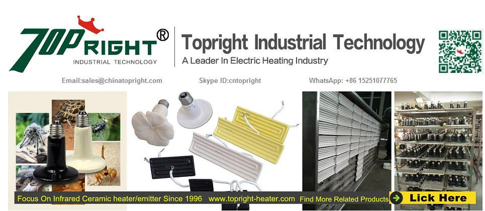 Arc-shaped Ceramic Infrared Panel Radiant Heater 1000w