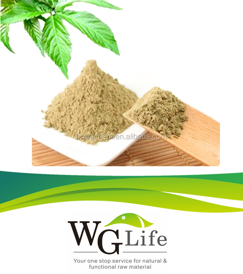 Pharmaceutical Grade Sweet Tea Leaves Herbal Extract Sweetener for Diabetes