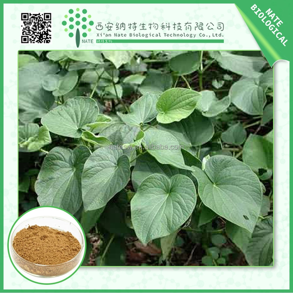 Factory supplier Kava Extract/Piper methysticum extract powder/ free sample Kavalactones powder