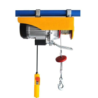 PA electric roof hoist for sale electric hoist 300kg 240V light weight motor hoist