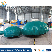 Customized inflatable turtle ,factory price PVC inflatable cartoon for sale