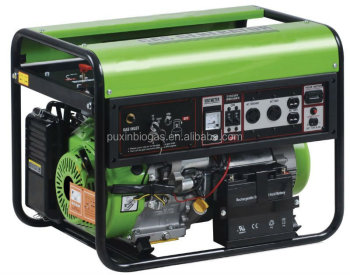 High Speed and High Efficiency Biogas Power Generator