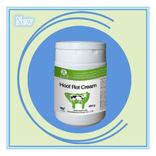 Non-antibiotic cow drug from hebei new century pharmaceutical