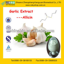 GMP Manufacturer Supply Pure Natural Garlic Extract Allicin Powder