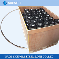 Fencing Application SS Wire Strand