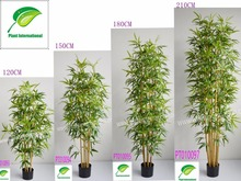 Close nature bamboo tree artificial plantgarden decoration