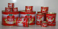 Chinese Food Canned Vegetable Canned Tomato Paste with Delicious Taste