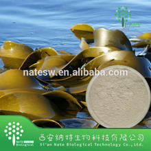 Top Grade Natural Brown Alga Extract, Laminaria Japonica Extract