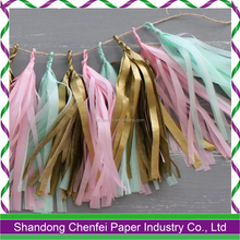 DIY Baby Shower Tissue Paper Decor Tassel Garland for Party