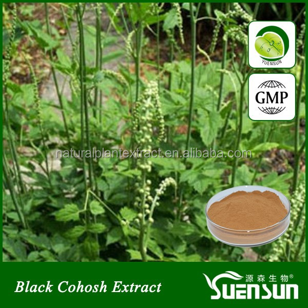natural herbal black cohosh extract powder black cohosh powder