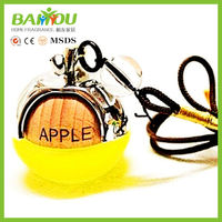 CHINA new innovative product hanging liquid air freshener car