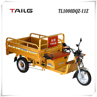tailg 3 wheel 1000w adult electric mobility cargo tricycle for sales TL1000DQZ-11Z