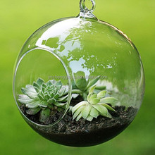 transparent glass Ball Shaped(two small holes) Terrarium Hanging Glass Orbs for Home Decoration Garden Accessories