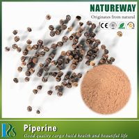 Free sample Piperine extract 90%,95%,98%,black pepper extract piperine