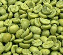 Green Coffee Bean Extract/Chlorogenic acids 50%/unroasted coffee bean Exract