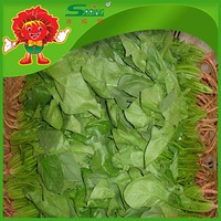 Bulk Frozen Vegetables, Cheap Chinese Fresh Spinach