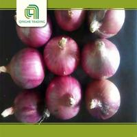 different tpyes red onions