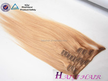 Wholesale Alibaba Remy Virgin Hair Malaysian human hair extentions clip in 200g